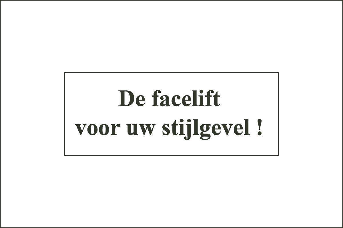logo_everaert03_facelift1_Omgek_voor_2400x1600